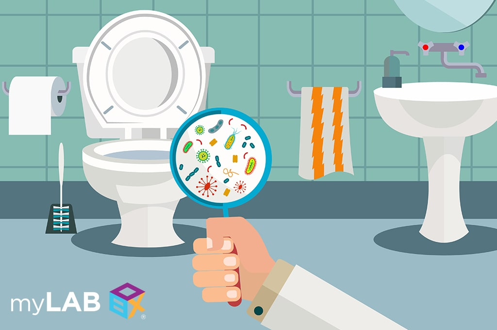 Can You Catch Stds From A Toilet Seat Mylab Box